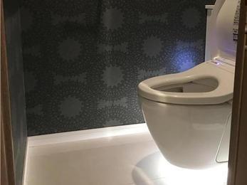 念願の空中に浮いたトイレと清潔さが出る床材
